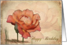 Happy Birthday Peach Rose Textured Background Card