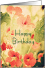Happy Birthday Nasturtiums card