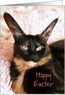 Big Eared Cat Happy Easter Greeting Card