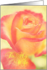 Beautiful Rose Wife Anniversary card