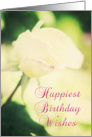 Beautiful Rose Birthday card