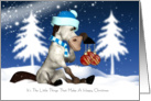 Fun Pony In The Snow Christmas Card - The Little Things card