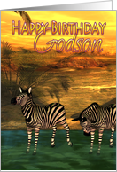 Godson Birthday Card Zebras In Water card