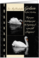 Godson Birthday Card Swans card