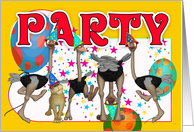 Party Invitation - Ostrages and Lion card