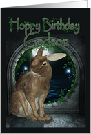 Godson Birthday Card - Hoppy Birthday With Rabbit card