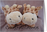 new baby twin giraffes card