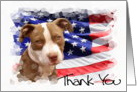 Thank You Pitbull Puppy card