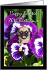 Happy Belated 80th birthday pug puppy card