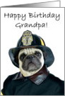 Happy Birthday Grandpa Fireman pug card