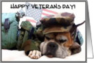 Happy Veterans Day Military Boxer Dog card