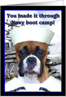Congratulations Navy boot camp graduate Boxer Dog card