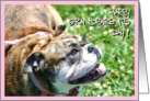 Happy Grandparents Day English Bulldog card