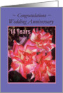 Wedding Anniversary - 14 years - Roses card