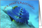 Blue Xmas Tree Worm card