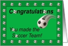 Soccer Team Congratulations Soccer Ball card