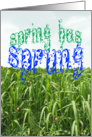 Spring has Sprung card