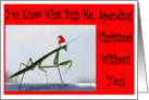 Christmas without you, Miss You, Bug, Funny, Humor card