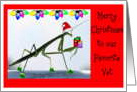 Christmas, Humor, Veterinarian, Bugs card