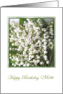 Birthday card for Mom with Lily of the valley flowers. card