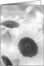 Friend, be my Bridesmaid card. Black and white sunflowers card