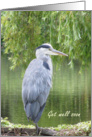 Get well soon - Heron by a lake. card
