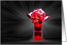 Redshift Rose card