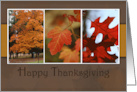 Happy Thanksgiving, Fall Leaves card