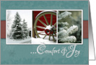 Comfort and Joy, Christmas Card- Snow and Trees card
