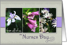 Happy Nurses Day from all of us- Purple Flower Snapshots card