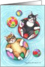 Swimming Pool Cats Birthday (Bud & Tony) card