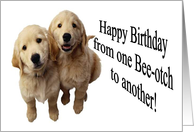 Happy Birthday Bee-otch card