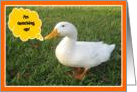 Happy Birthday Getting older Quacking up with duck card