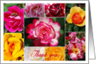 Rose Collage Thank You - blank card