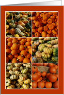 Pumpkin and Squash Collage Notecard card