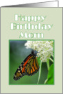 Happy Birthday Mom Monarch Butterfly on White Milkweed Flower card