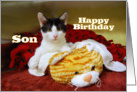 Son Happy Birthday, Kitten with Toy Tiger card