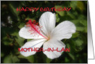 Happy Birthday, Mother-in-Law, White Hibiscus card