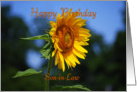 Son-in-Law, Happy Birthday, Sunflower card