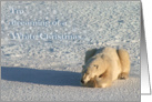 Polar White Christmas Dreams card