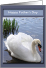 Father's Day - swan card