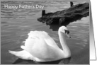 Father's Day - White Swan card