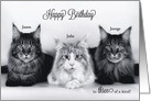 Triplet Birthday - Three Tabby Cats card
