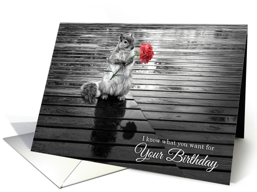 Gift and greeting card ideas funny happy birthday greetings for friends m4hsunfo