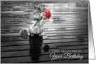 Birthday Squirrel with Carnation Black and White card