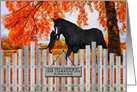 Thanksgiving Horse and Cat with Autumn Colors and Picket Fence card