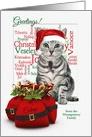 Custom Cat and Mouse Christmas Tabby card