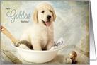 Golden / Champagne Birthday Golden Retriever Puppy card