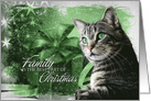 Christmas Silver Tabby Cat with Green Background card