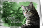 from the Cat Christmas Silver Tabby Cat with Green Background card